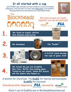 New-flyer-blockheads